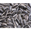 Sunflower seed 1lb bag